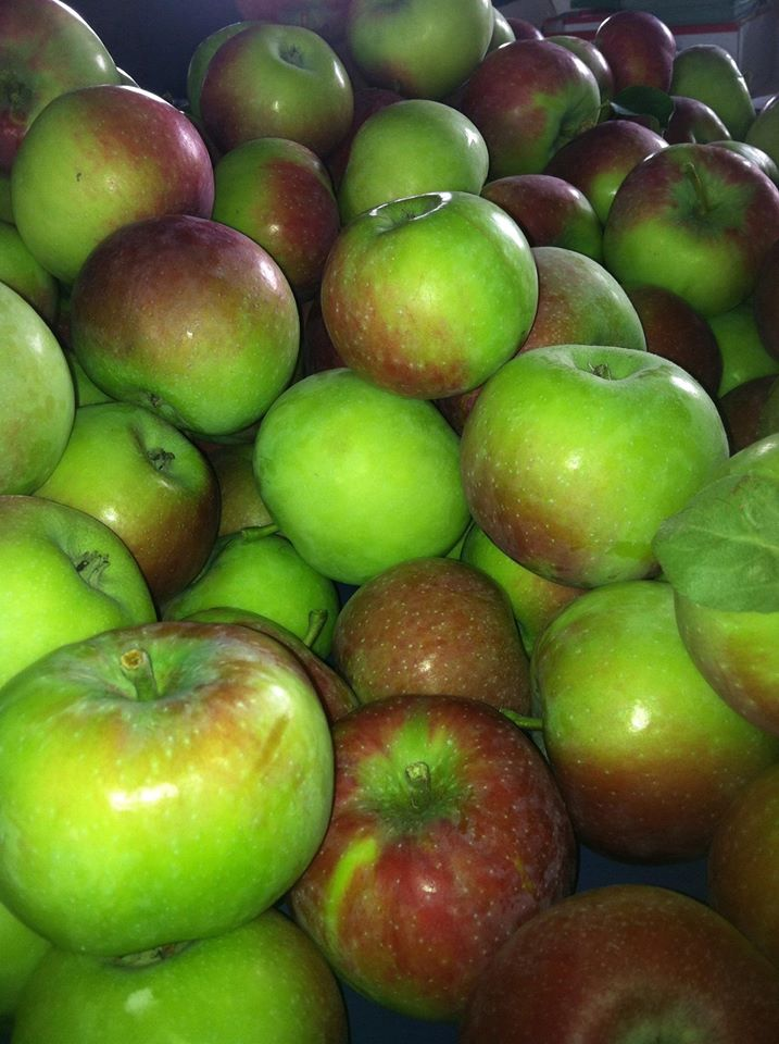 Och S Fruit Farm Visit Fairfield County
