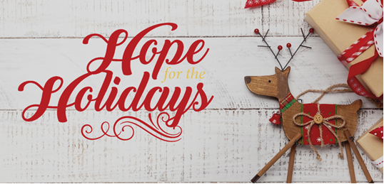 Hope for the Holidays Drive By Festival