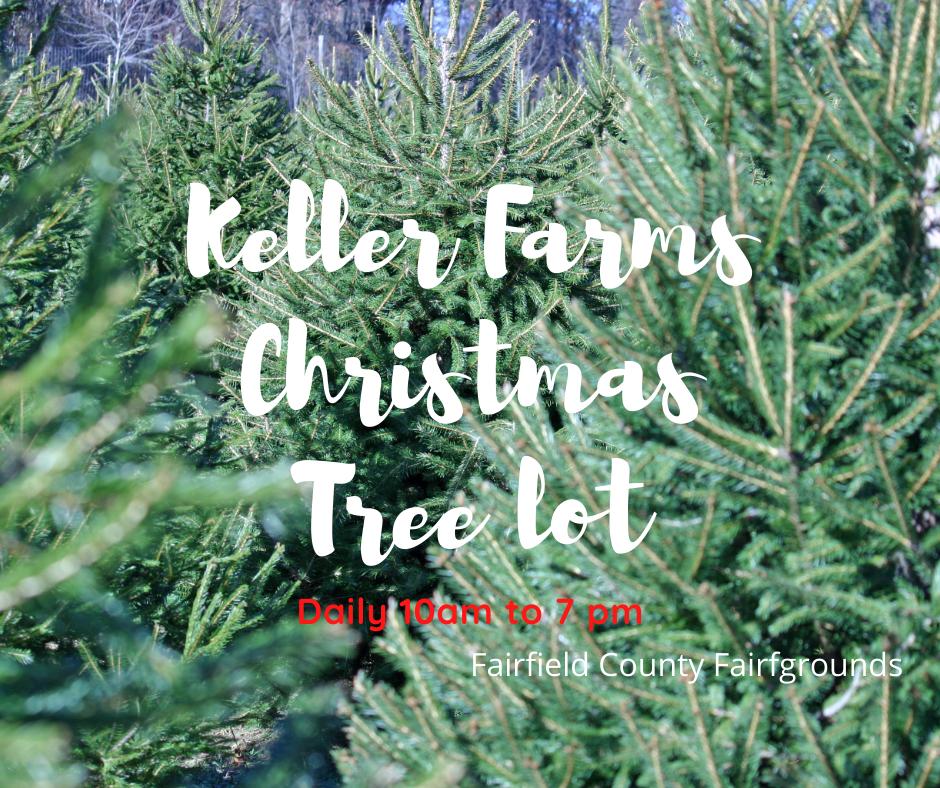Keller Farm Christmas Trees at the Fairgrounds