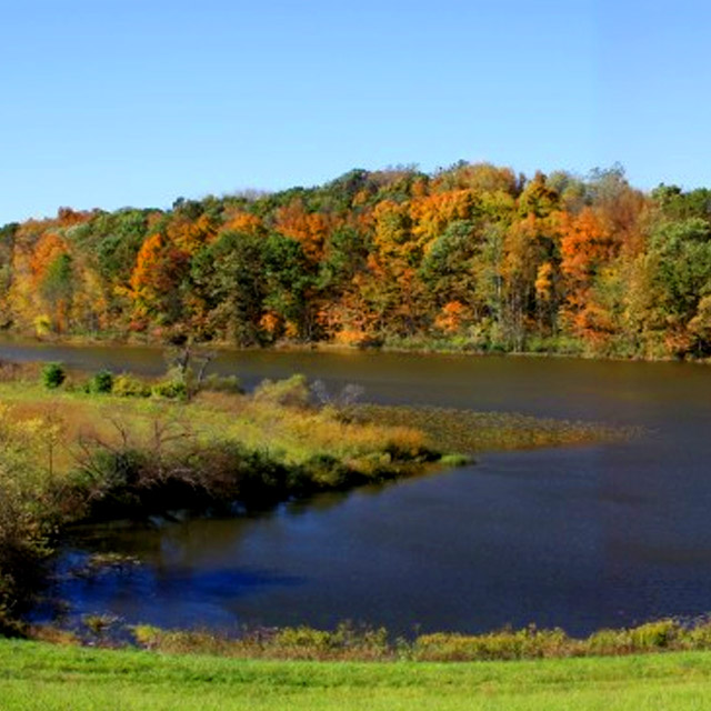 Deep orange and green leaves on the far shore of Rock Mill Lake.