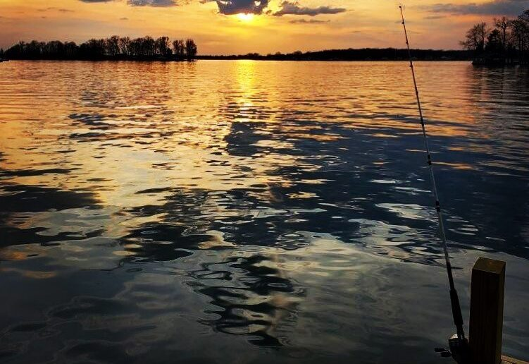 A fishing pole propped up on a dock in the evening.