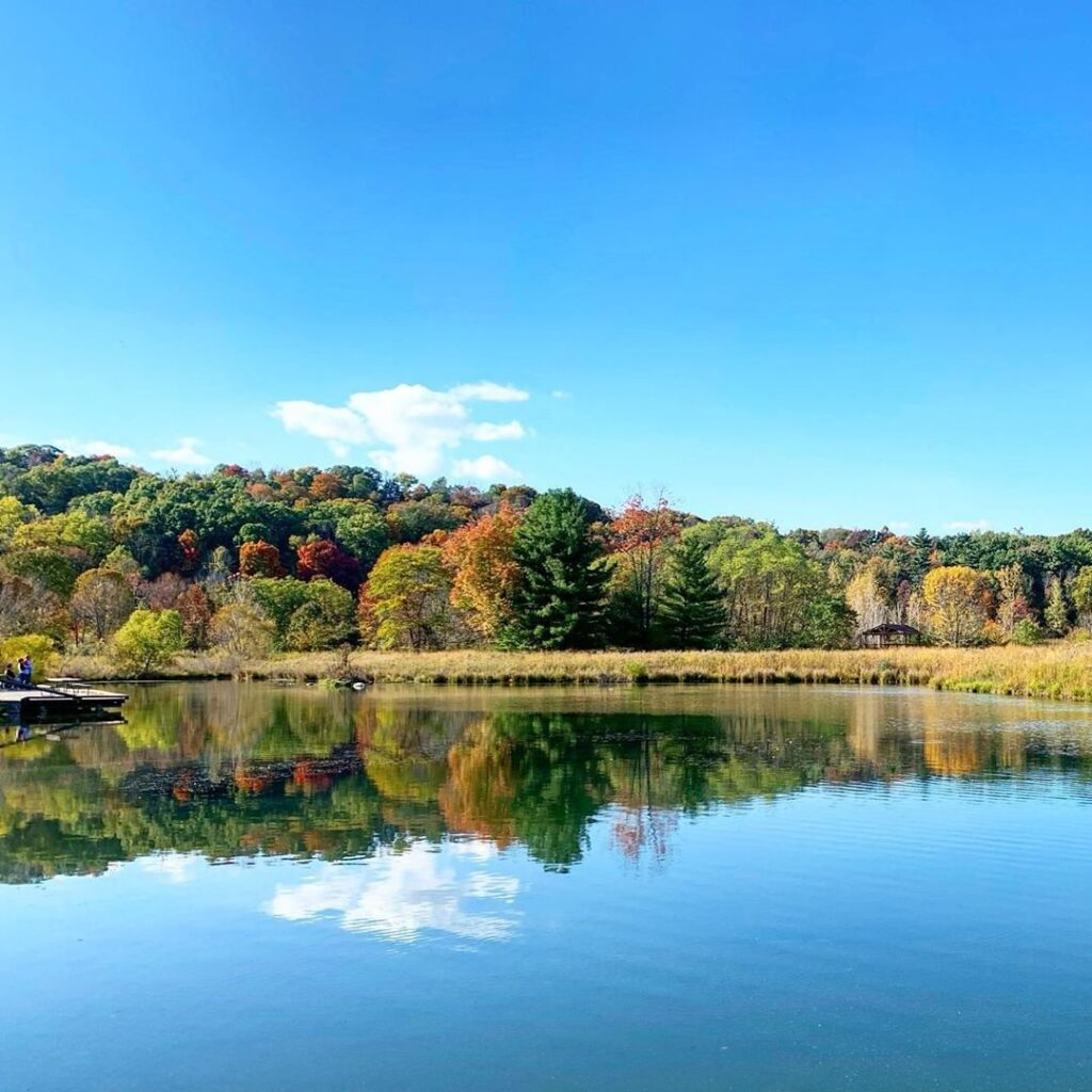 A gorgeous, placid blue lake with a wooded shoreline at Chestnut Ridge.